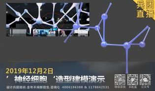 '神经细胞'建模演示.兵团晚间直播课.12月2日